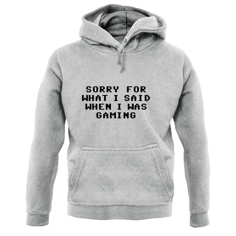 Sorry For What I Said When I Was Gaming Hoodies