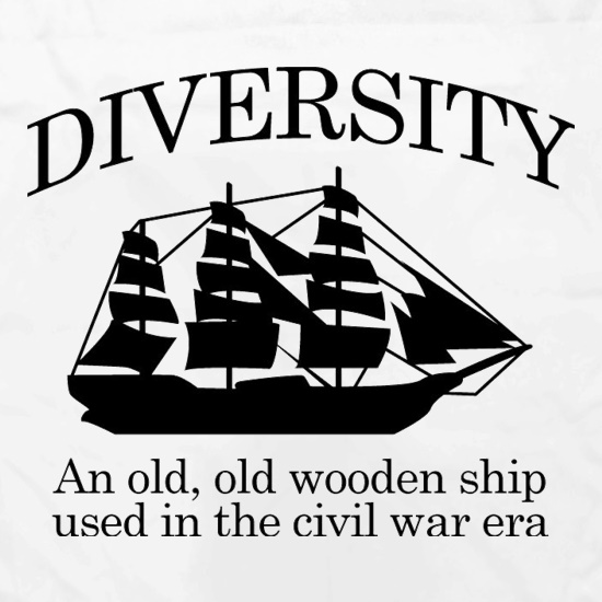 Diversity - An Old Old Wooden Ship Used In The Civil War Era Apron