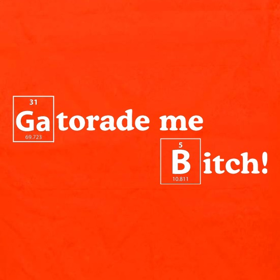 Gatorade me Bitch Apron