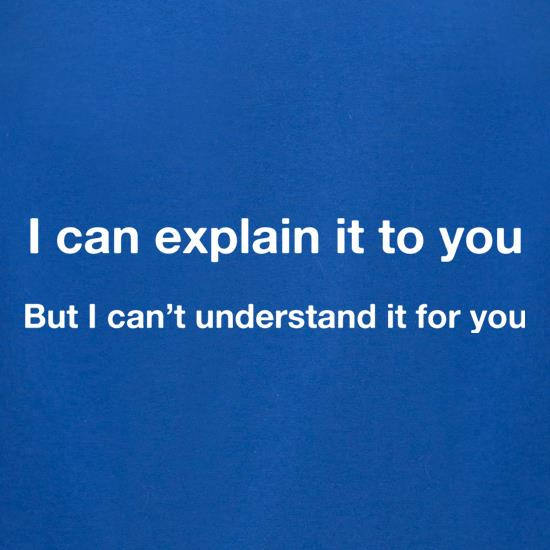I Can Explain It To You t-shirts for ladies