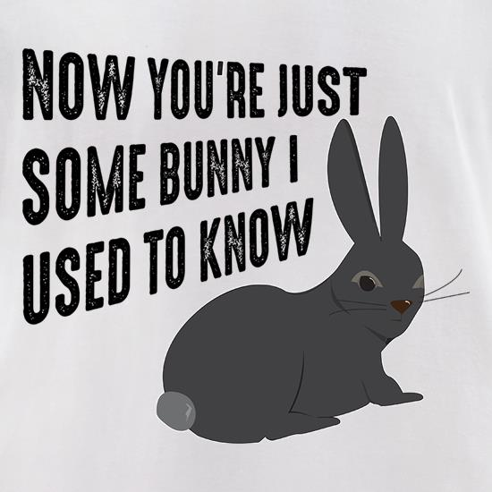Now You're Just Some Bunny I Used To Know t-shirts for ladies
