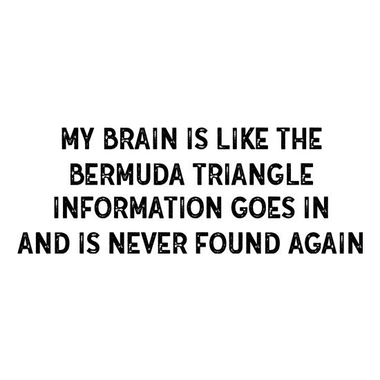 My Brain Is Like The Bermuda Triangle t-shirts
