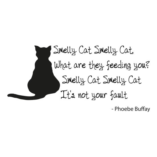 Smelly Cat t-shirts