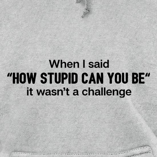 How Stupid Can You Be? Hoodies