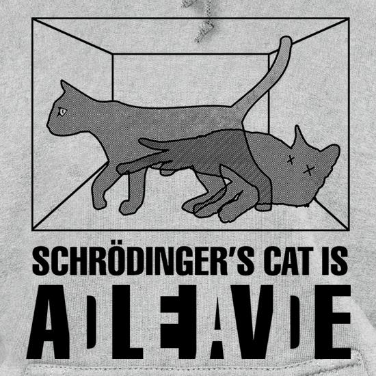 Schrodinger's Cat Box Hoodies