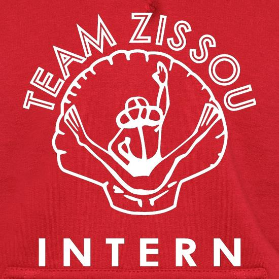 Team Zissou Intern Hoodies