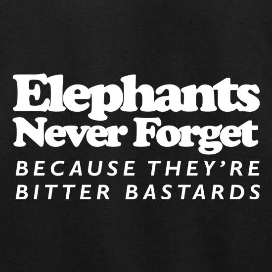 Elephants Never Forget Because They're Bitter Bastards Jumpers
