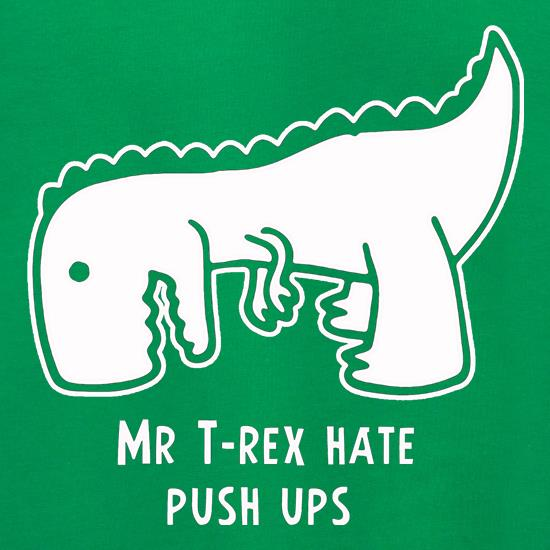 Mr T-Rex Hate Push Ups Jumpers