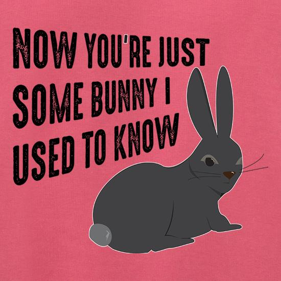 Now You're Just Some Bunny I Used To Know Jumpers