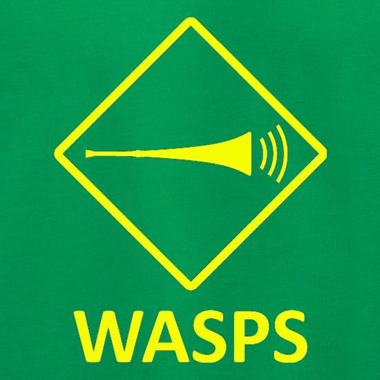Wasps Jumpers