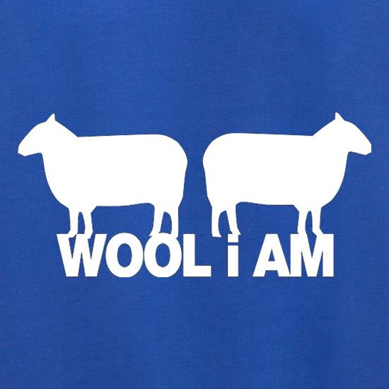 Wool I Am Jumpers