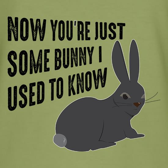 Now You're Just Some Bunny I Used To Know t-shirts