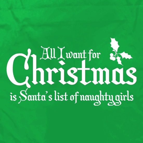 all i want for christmas is santa's list of naughty girls t shirt