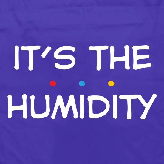 It's The Humidity t shirt