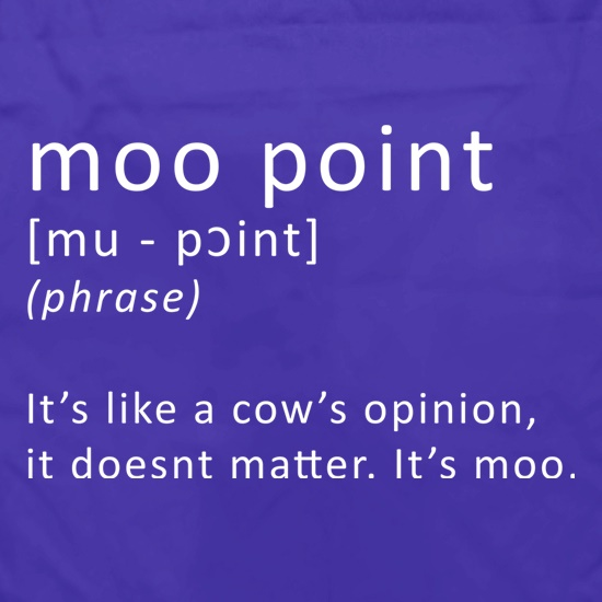 Moo Point t shirt