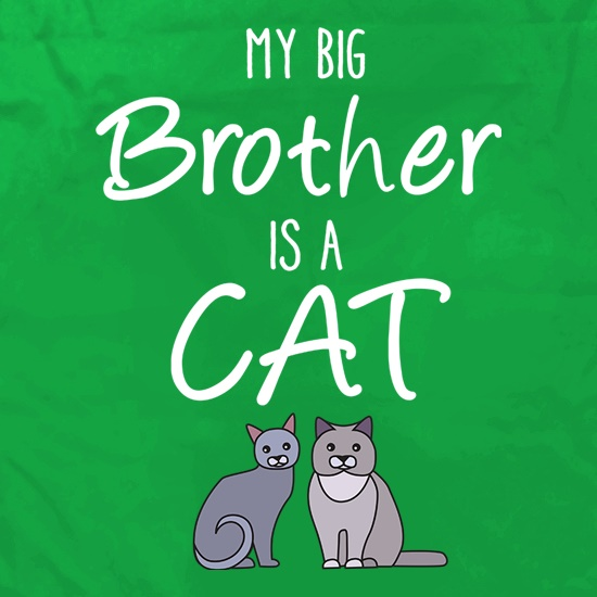 My Big Brother Is A Cat t shirt
