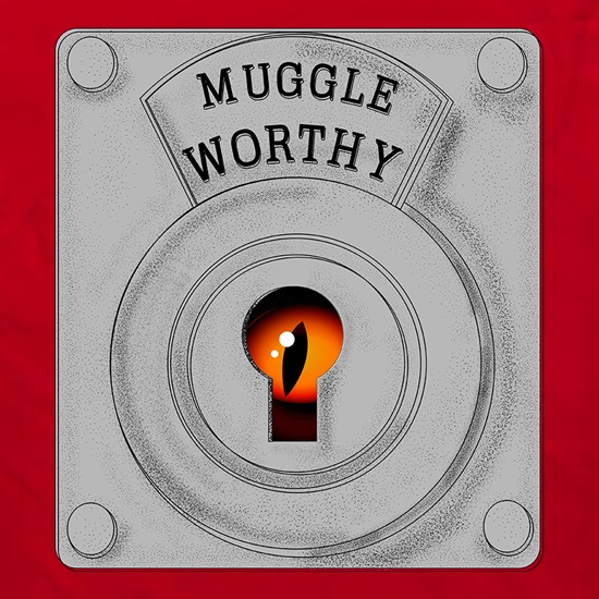 Muggle Worthy t shirt
