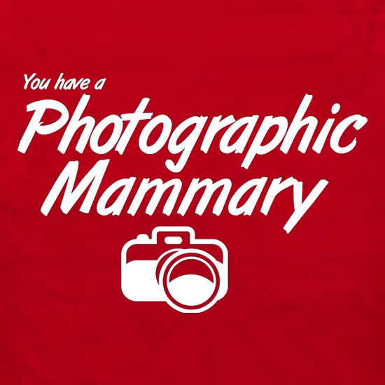 You Have A Photographic Mammary t shirt
