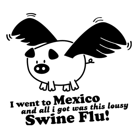I Went To Mexico And All I Got Was This Lousy Swine Flu! t shirt