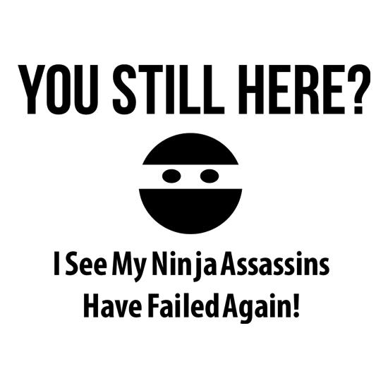 you still here? i see my ninja assassins have failed again t shirt